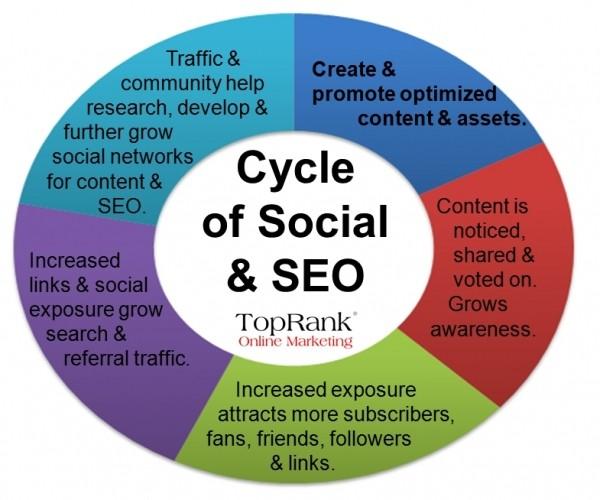 Ciclo Social y del SEO